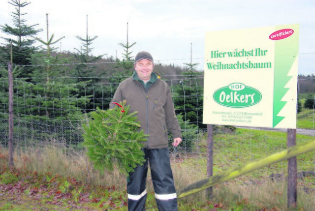 Ndr Weihnachtsbaum.Bernd Oelkers Thema