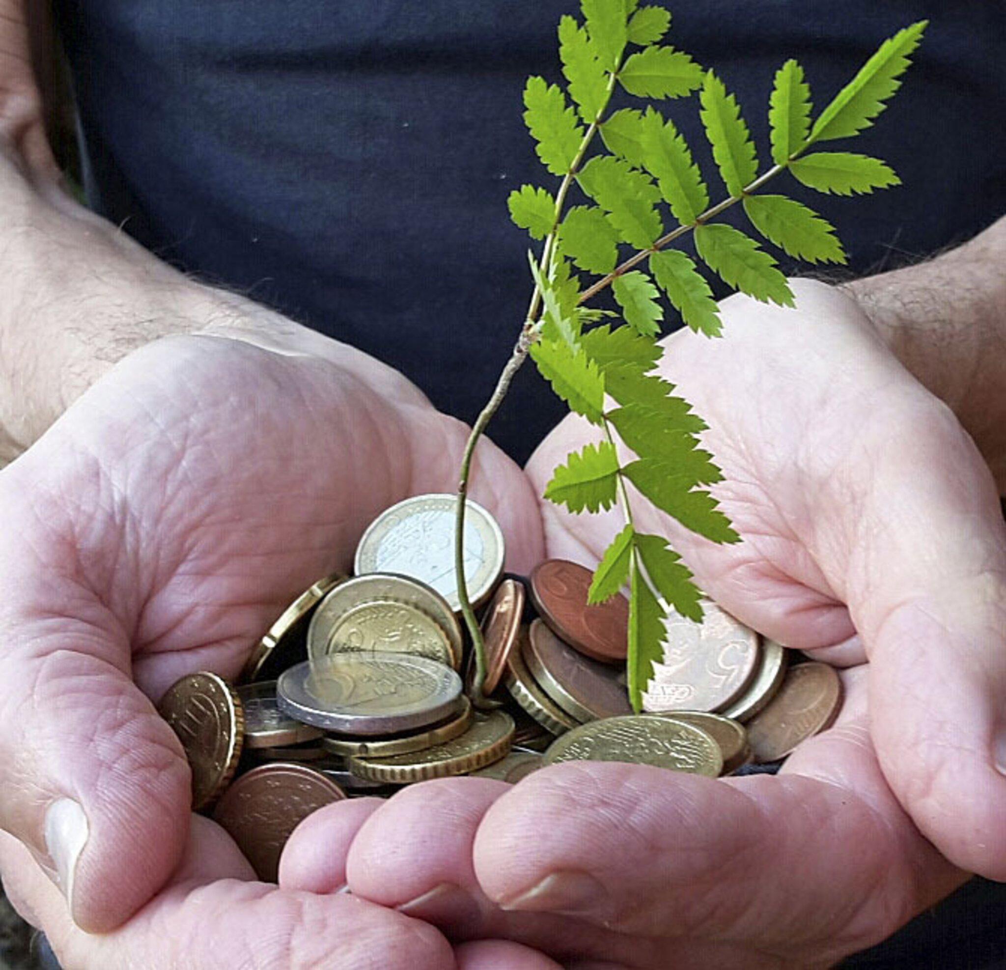 WOCHENBLATT-Serie zum Thema Nachhaltigkeit                                                                  Grüne Geldanlagen: ökologisch und sozial finanzieren