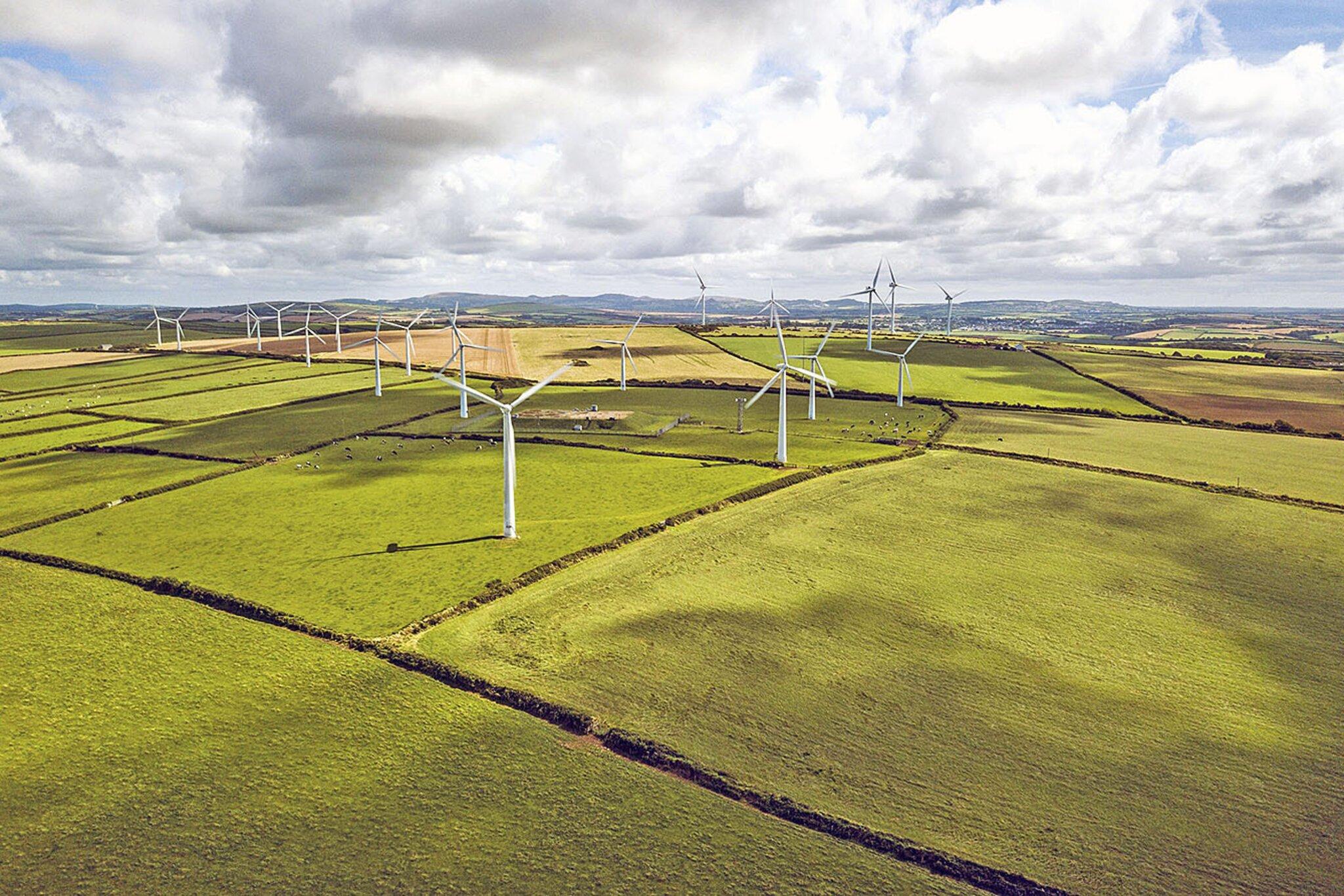 Lust auf grüne Energie                                                                  Studien zeigen: Deutsche setzen auf Ökostrom und Photovoltaik